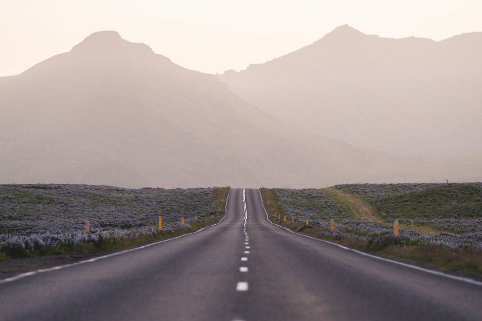 shallow focus photo of road